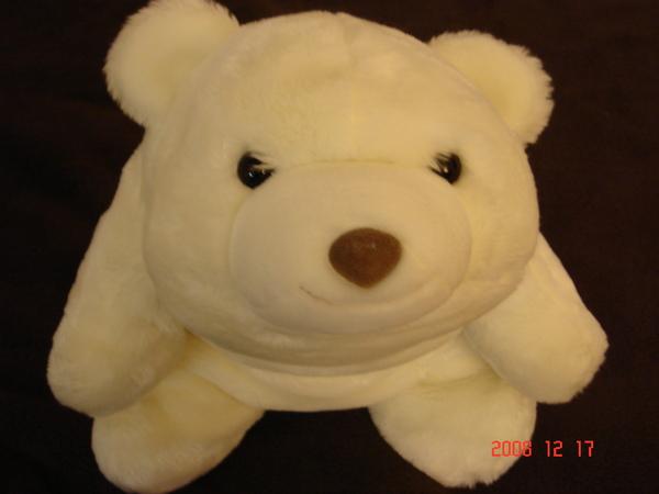 大白熊 (2).JPG