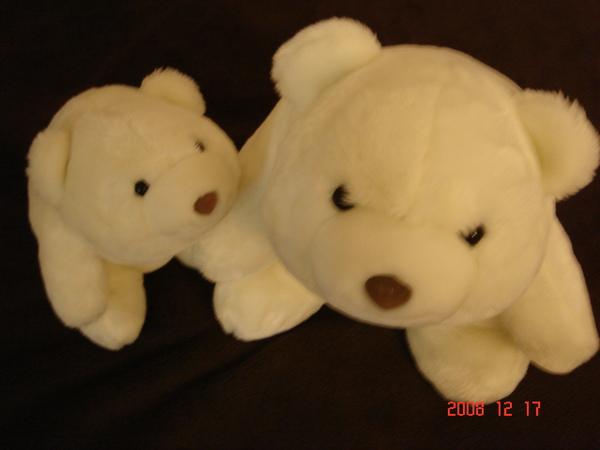 大小白熊 (2).JPG