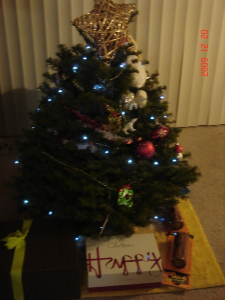禮物在聖誕樹下