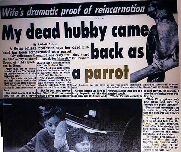 鸚鵡轉世19880705 Weekly World News