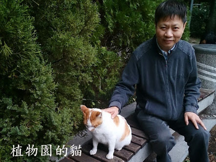 植物園貓3
