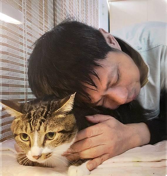 與愛貓肥寶