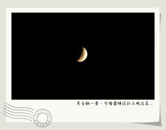 DSC_4198n.jpg