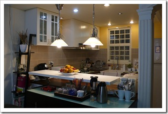 Kitchen Project (3)
