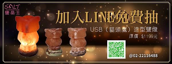 抽獎-USB貓頭鷹鹽燈.jpg