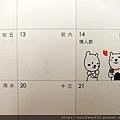 SAM_5993.jpg