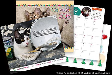 img_cat_calendar.png