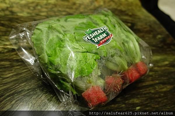 後少女時代 源鮮智慧農場 有機無毒蔬菜