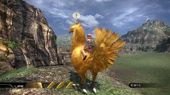 ff13-bird-04.jpg