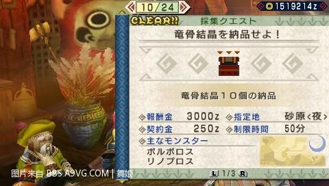 201101061043_008.jpg