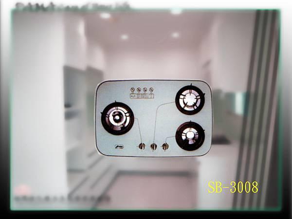 SB-3008.jpg