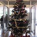 學校的耶誕樹