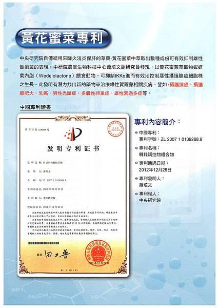 黃花蜜菜專利-中國專利.jpg