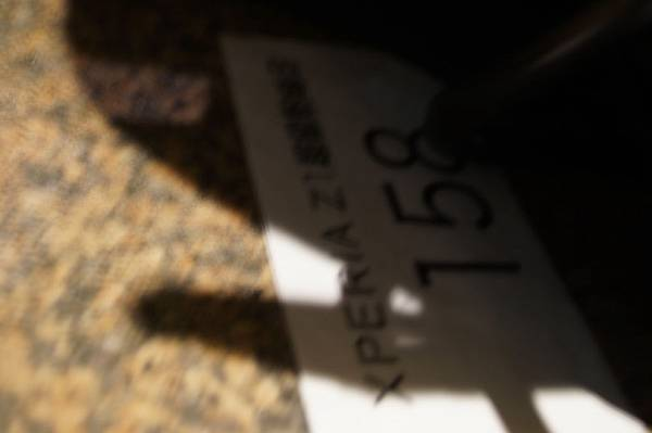 DSC03113.JPG