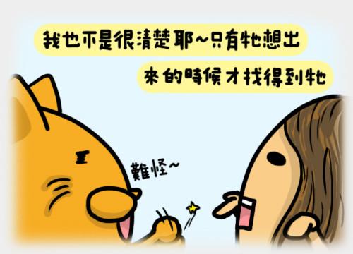 安全貓4.jpg