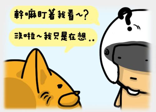 安全貓6.jpg