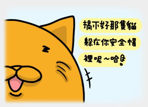 安全貓7.jpg