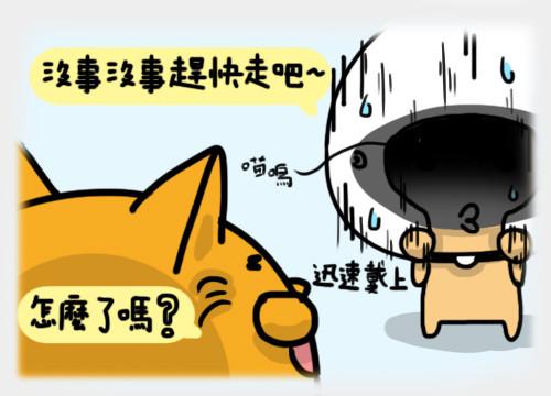 安全貓10.jpg