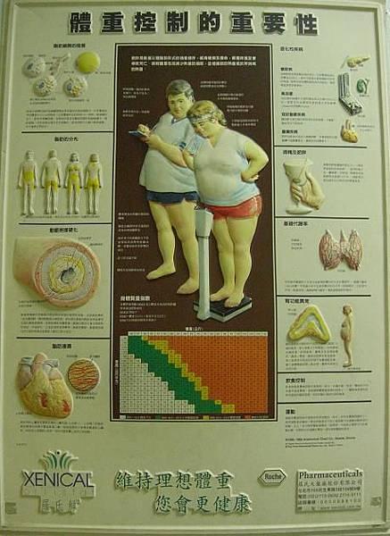 體重控制的重要性