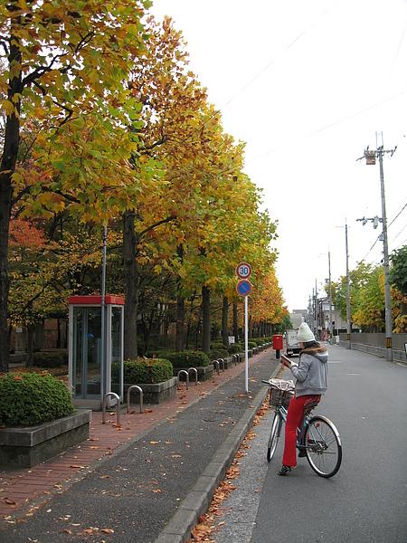 2008年11月 297.JPG