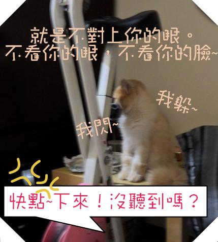 SAM_4643(001)_副本_副本