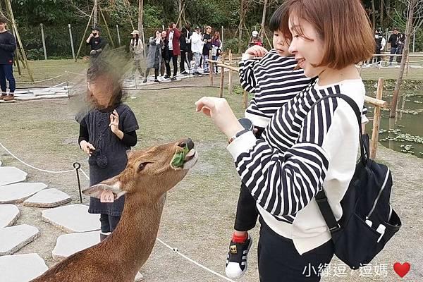 Screenshot_20200203_142455_com.huawei.himovie.overseas_mr1580711262808.jpg