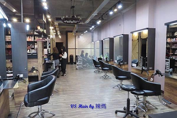VS Hair3.JPG