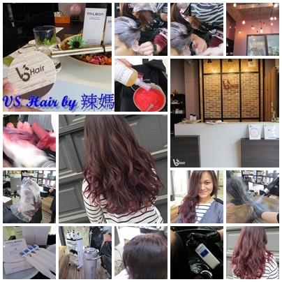 VS Hair22.jpg