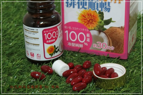 紅花10.JPG
