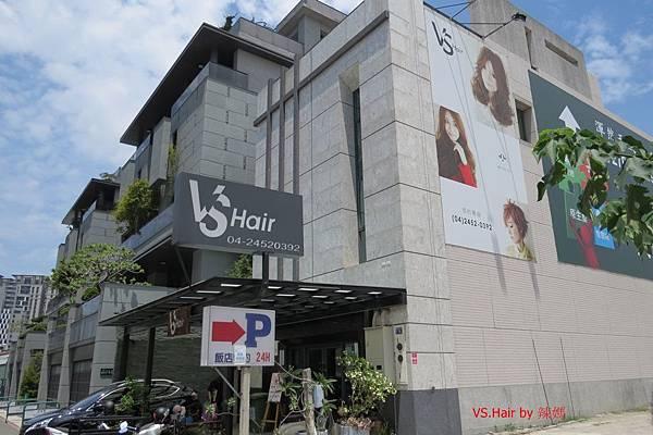 VS.Hair.JPG
