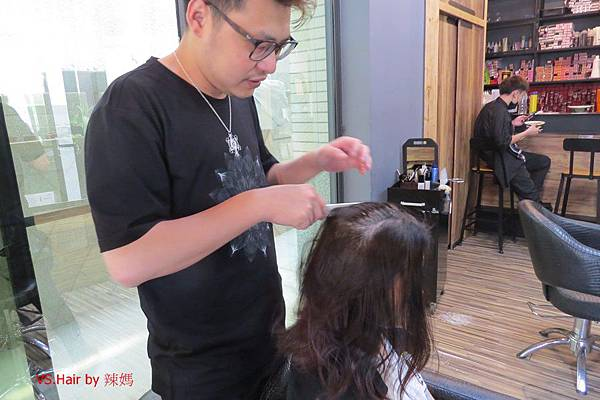 VS.Hair1.JPG