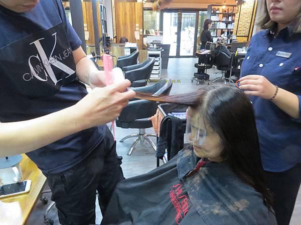 VS Hair12.JPG