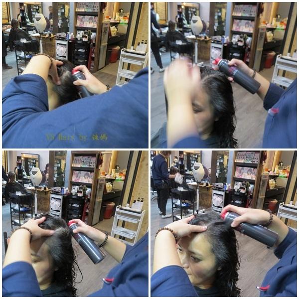 VS Hair25.jpg