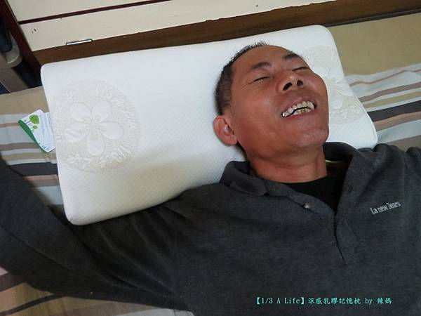 乳膠記憶枕10.JPG