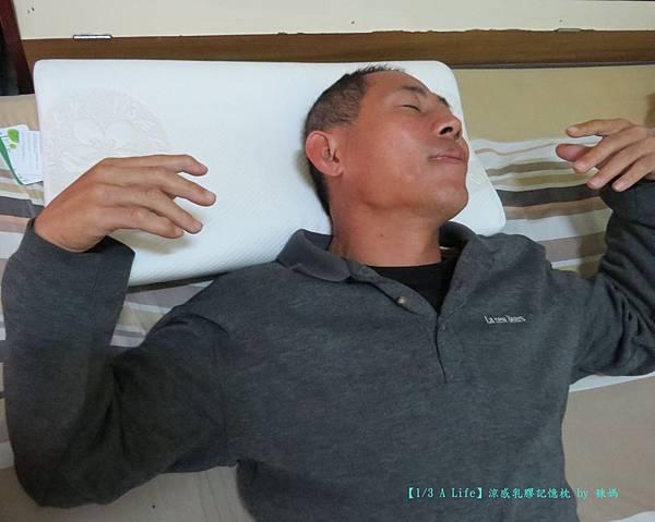 乳膠記憶枕11.JPG