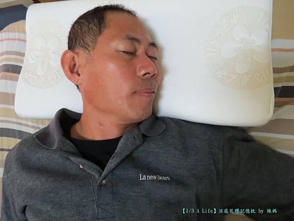 乳膠記憶枕13.JPG
