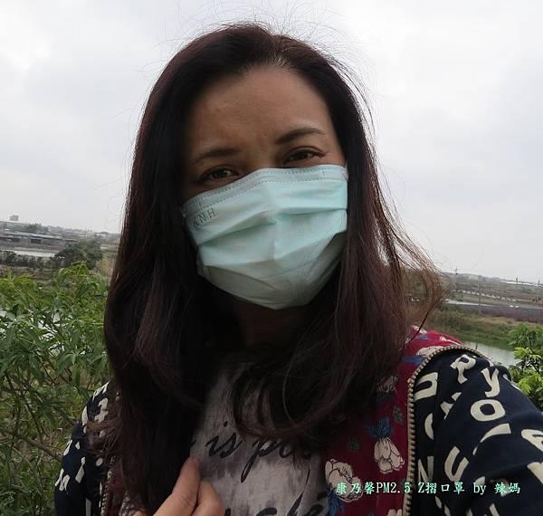 康乃馨口罩19.JPG