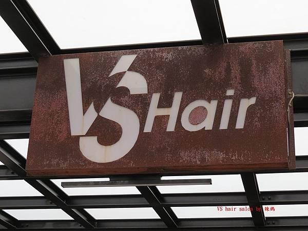 vs hair1.JPG