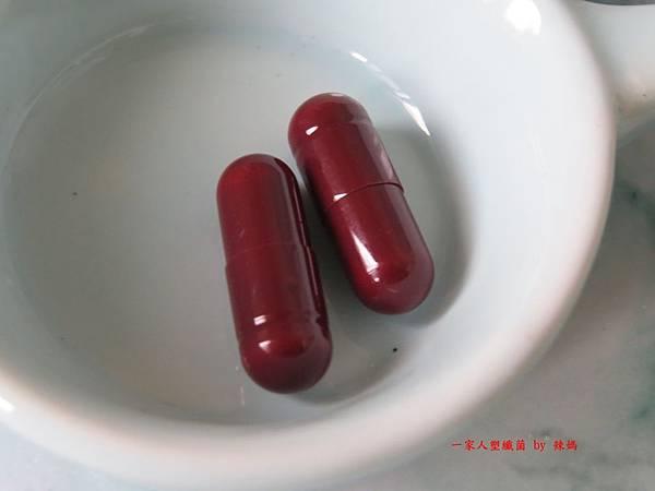 塑纖菌12.JPG