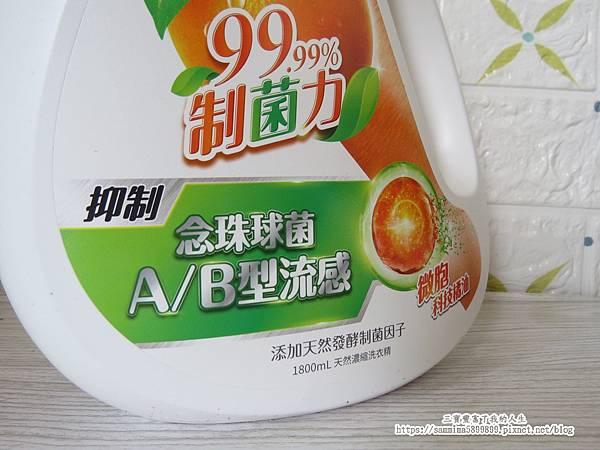橘子工坊2.JPG