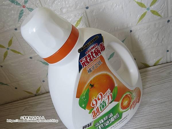 橘子工坊1.JPG