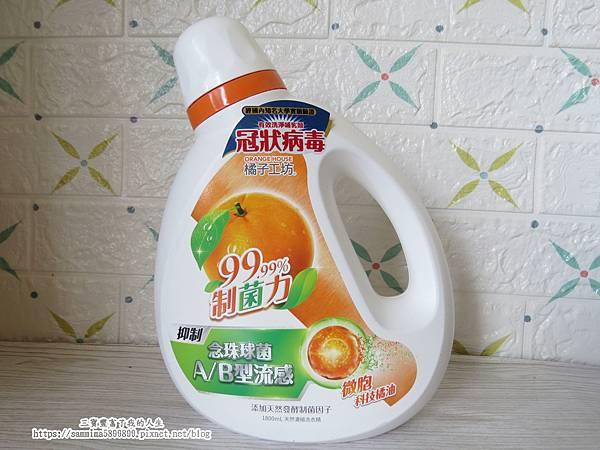 橘子工坊.JPG