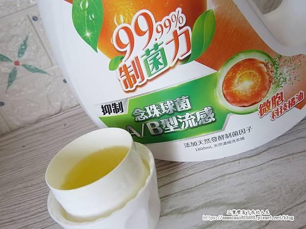 橘子工坊9.JPG