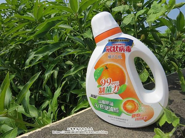 橘子工坊15.JPG