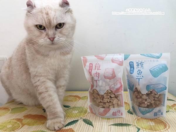 貓侍17.jpg