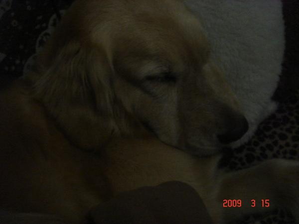 2009.1 010.jpg