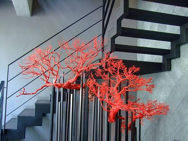 1樓的紅珊瑚