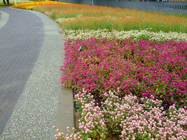 精緻花卉區