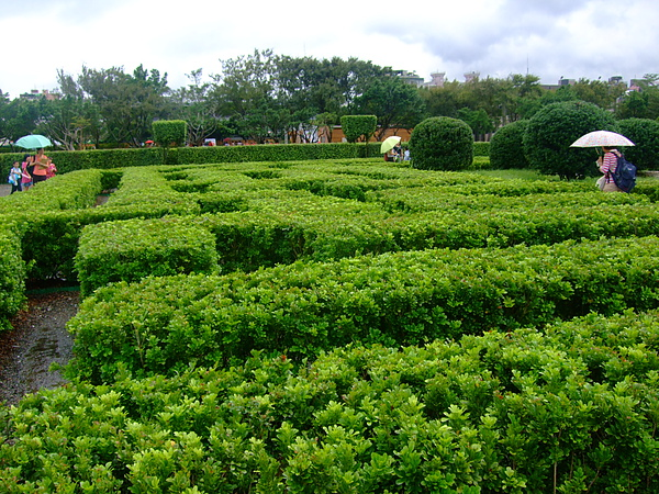 迷宮花園區