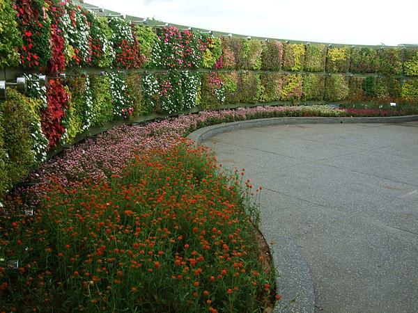 造景花牆區